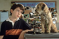 Image from: Good Boy! (2003)