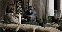 Image from: Dawn of the Planet of the Apes (2014)