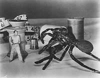 Image from: Incredible Shrinking Man, The (1957)