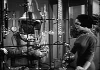 Image from: Wasp Woman, The (1959)