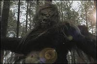 Image from: Sasquatch: The Legend of Bigfoot (1976)
