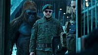 Image from: War for the Planet of the Apes (2017)