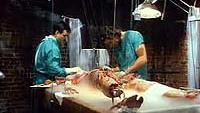 Image from: Bride of Re-Animator (1989)